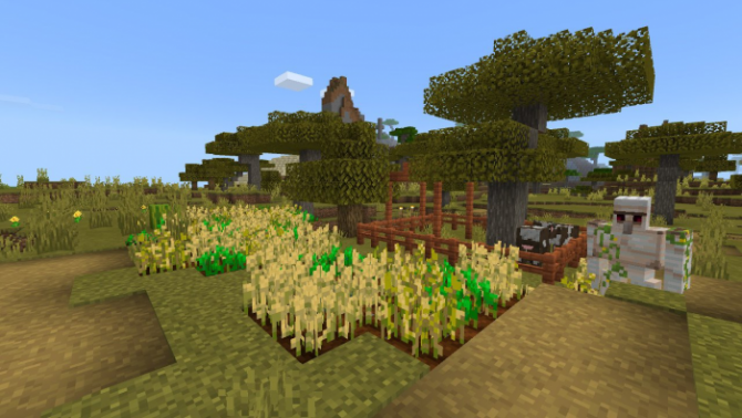 Seed Savannah Village At Spawn 1.10